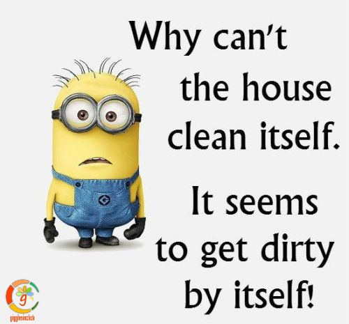Funny-Minion-Quotes-Of-The-Day-311