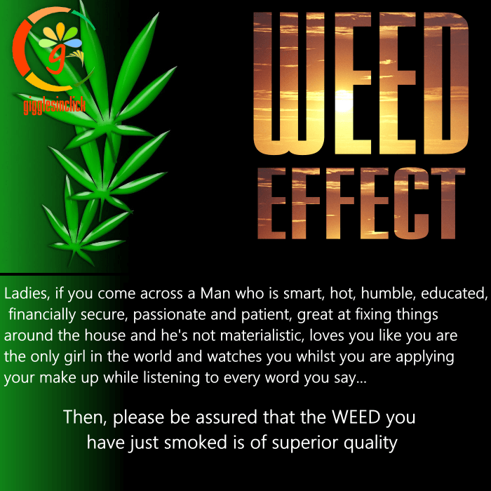 weed effect, perfect man, joy, happiness, listen, doze, giggles, gigglesinclick.com